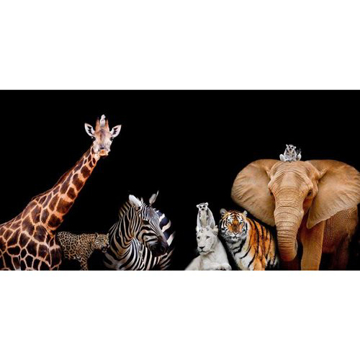 Picture of Zoo Animals Canvas